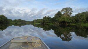 Por el Amazonas, rumbo a Argentina - Miguel Ángel Vázquez